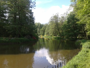 Park Pszczyński