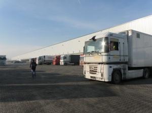 AB POLSKA wholesalebriquettes